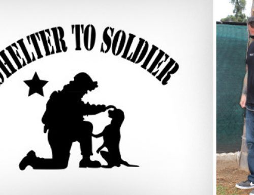 Be the Light: Shelter to Soldier Charity Gala